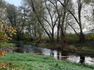 Brno Man Finds WW2 Explosive Material While Magnet Fishing in River Svitava
