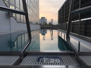 In Photos: New Wellness Facility Opened at Lužánky Swimming Pool